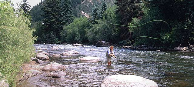 Summer Fly Fishing in Vail, Colorado