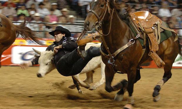 vegas - rodeo