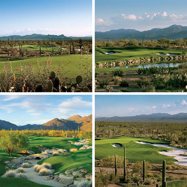 Ritz-Carlton Dove Mountain Jack Nicklaus Courses