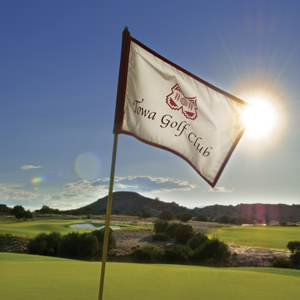 towa golf club flag