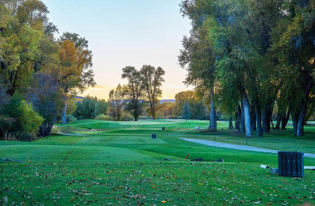 The par-3 7th at Dos Rios Golf Club.