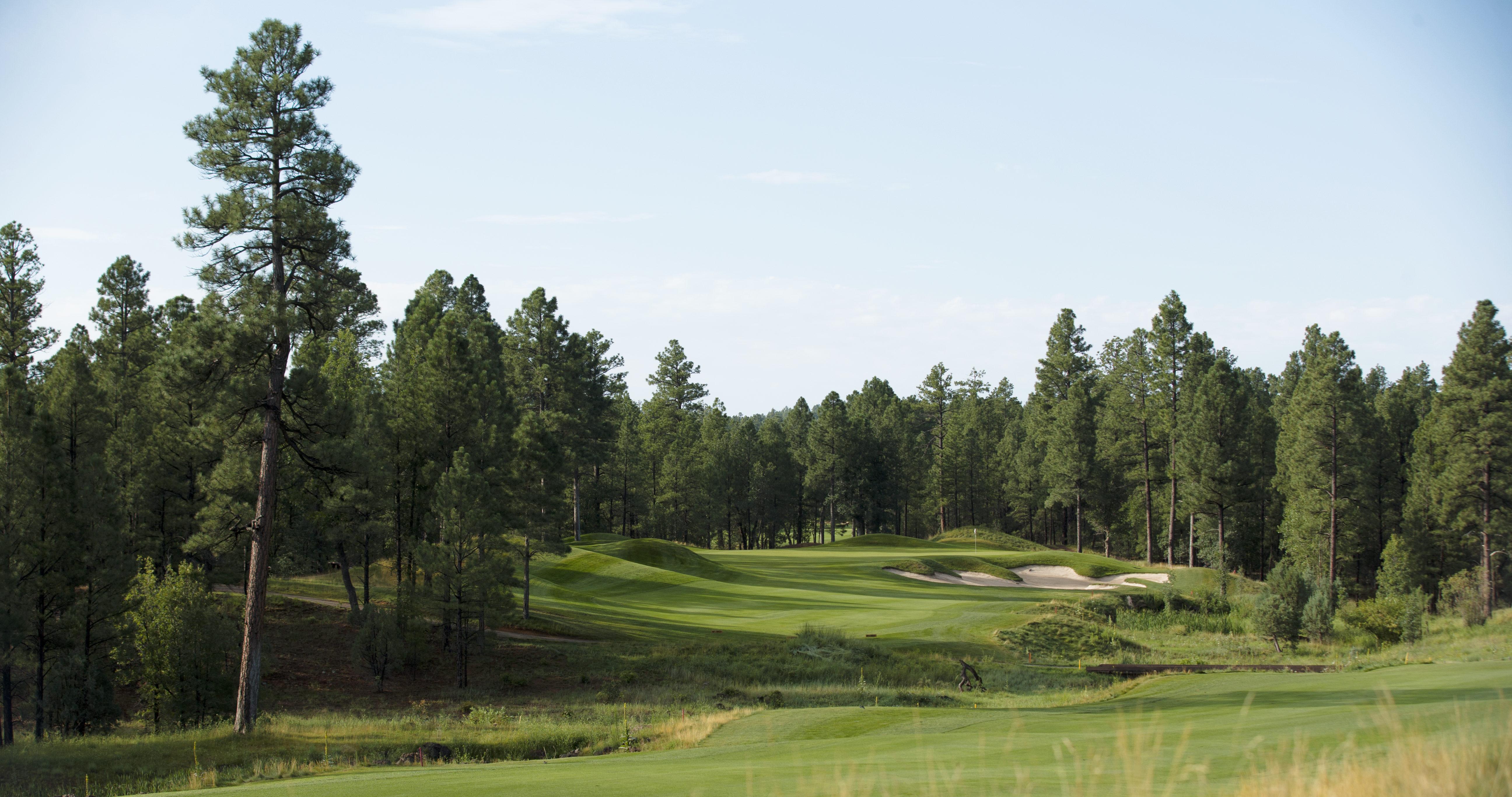 Torreon_Golf_Club