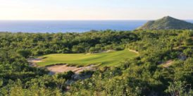 Twin Dolphin Golf Club - Par-3 11th
