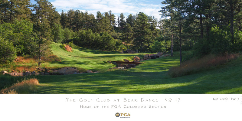 No. 17 - The Golf Club at Bear Dance