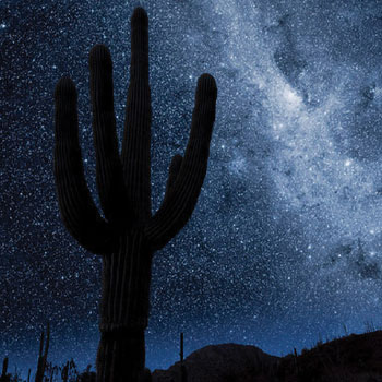 Stargazing in Tucson