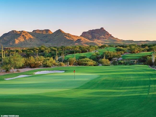 We-Ko-Pa Golf Club Saguaro number 11