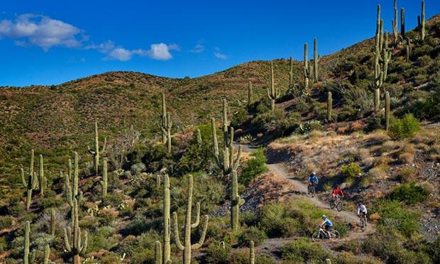 Mountain biking trails near Desert Mountain