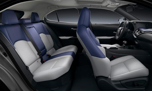 2019 Lexus UX250h AWD profile shot
