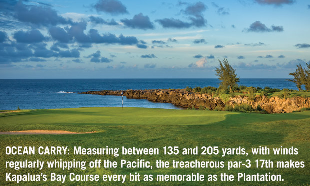 Measuring between 135 and 205 yards, with winds regularly whipping off the Pacific, the treacherous par-3 17th makes Kapalua's Bay Course every bit as memorable as the Plantation.