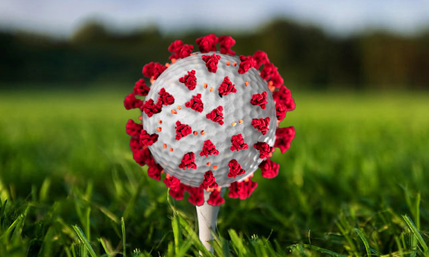COVID-19 golf ball