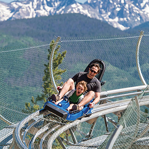 Forest Flying Mountain Coaster
